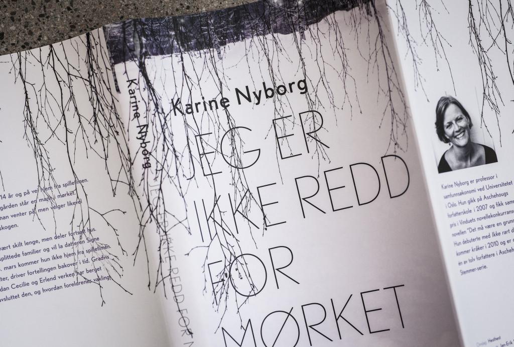 _nyborg
